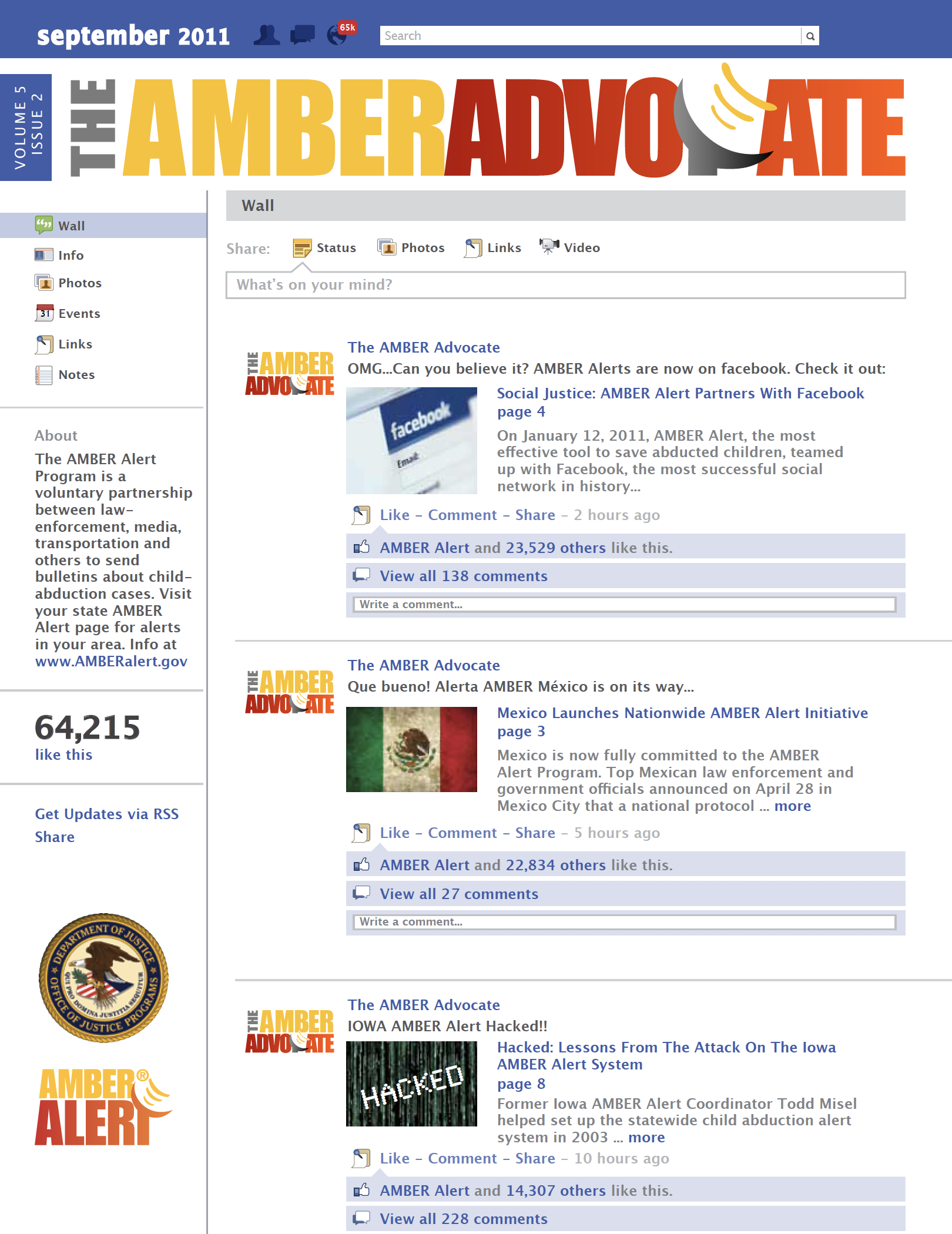 AMBER Advocate 17 cover