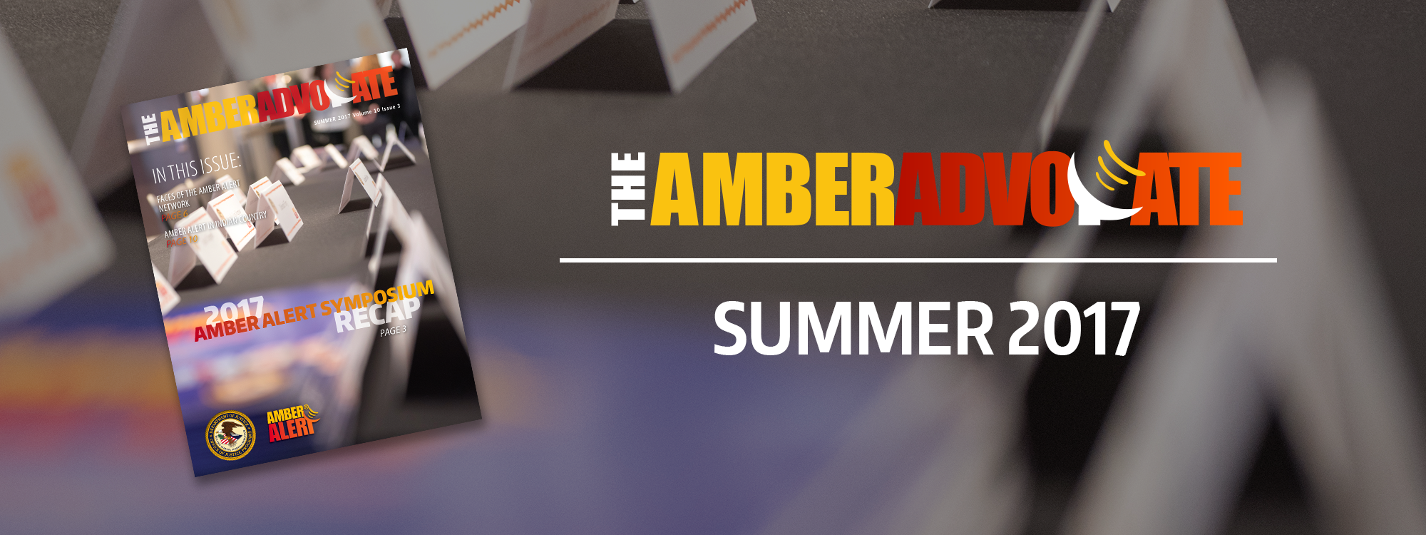 The AMBER Advocate Summer 2017 header