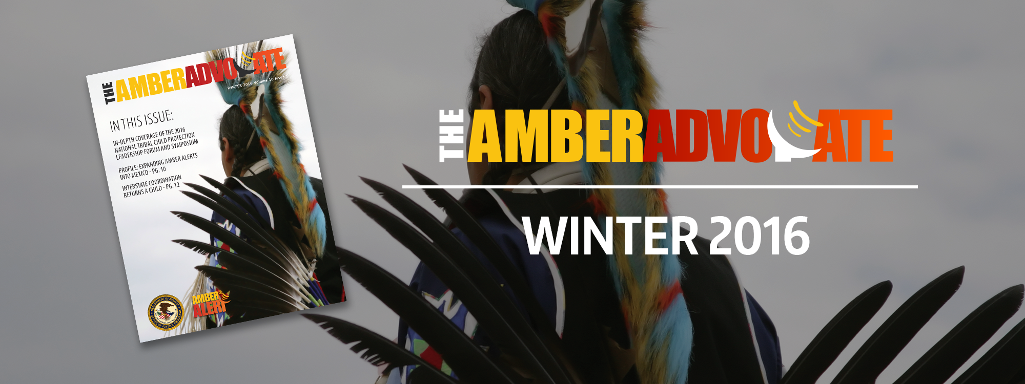 The AMBER Advocate Winter 2016 header